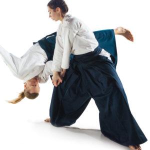 Aikido_Trainer
